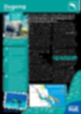 Dugong_Fact-Sheet.png