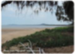Beach_at_Tannum_Sands,_400px.png