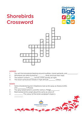 Shorebirds3_Crossword.png