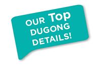 DugongDetails.png