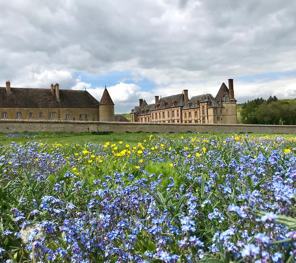 Château de la Rivière depuis le potager