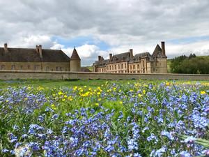 Rendez-vous aux jardins : le parc du Château de la Rivière sera ouvert du 1 au 3 juin