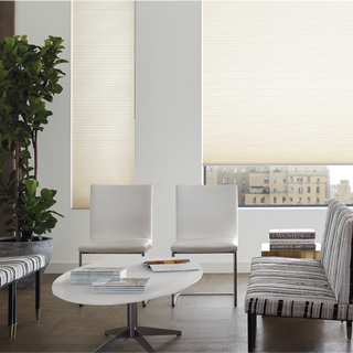22oneycomb cellular shades in office wai