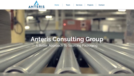Anteris Consulting Group