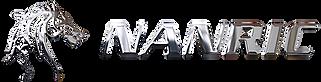 NANRIC Horsehead Logo