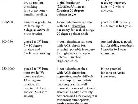 Classifying Laminitic Damage