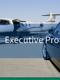 Chicago Executive Protection 48.jpg