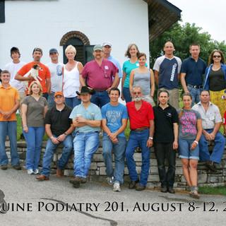 Equine Podiatry 201
