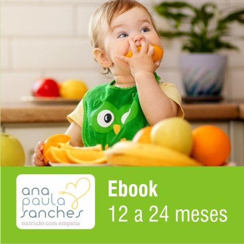 Ebook 12 a 24 meses