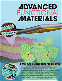 Advanced Functional Materials, 2019, Fro