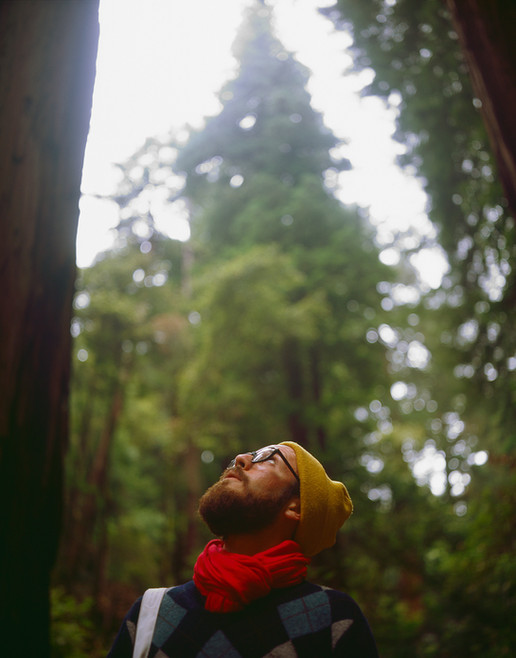 Phillip | Muir Woods, CA | 2012