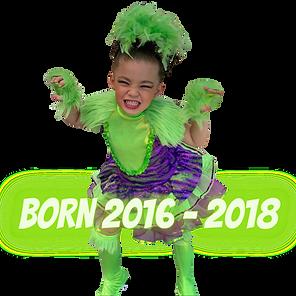 BORN 2016-2018.png