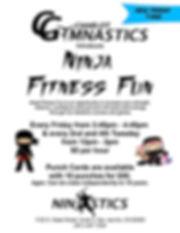 NinjaFunFlyer.jpg