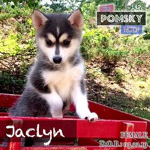 Jaclyn4.jpg