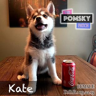 Kate5.jpg