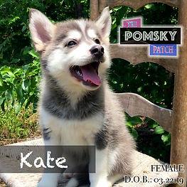 Kate4.jpg
