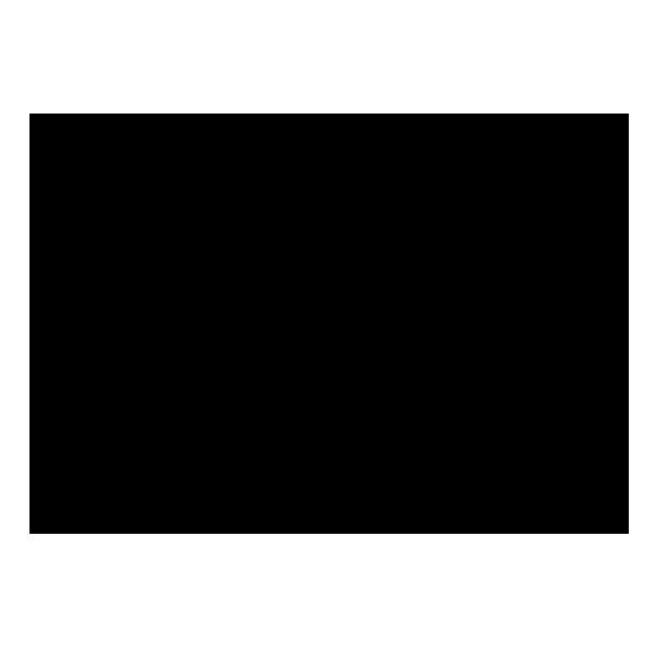logo B:W YT