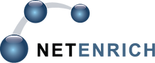 netenrich-new-logo-png-small.png