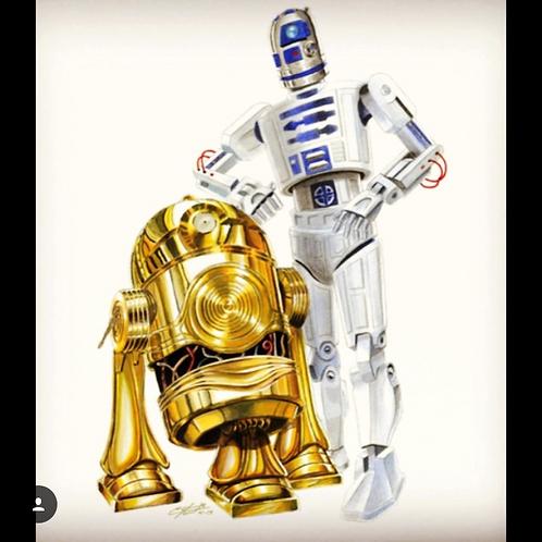 R2-PO/C3-D2