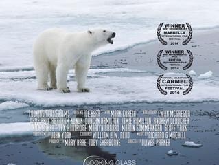 Ice Bear wins best documentary