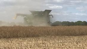 Harvest 2020 is Underway!