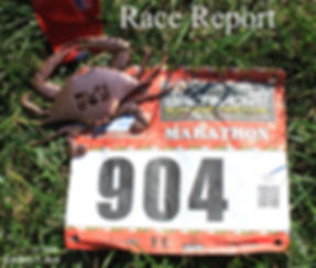 Baltimore Marathon Race Report; runner's race bib, finisher's medal