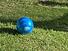 cropped-PIO-Logo-180x42-RGB.jpg
