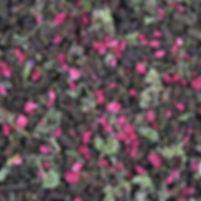 Малиновое чудо гранулы.jpg