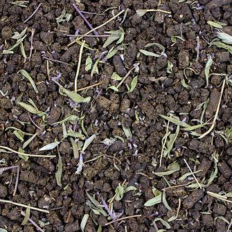 Иван-чай Богородский рассыпной. Купить иван-чай с чабрецом