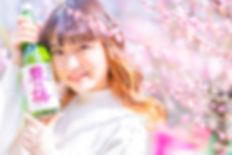 17-1 フォトコン用-豊能梅 (150dpi).jpg