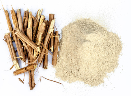 Ayurvedic Ashwagandha - Effective Stress & Anxiety Relief for Dogs.