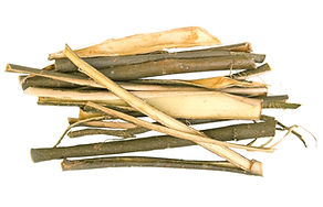 White Willow Bark for dogs