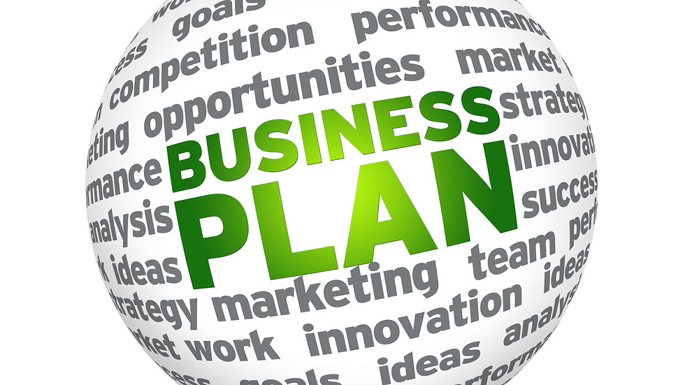 Business Plan-One Page Canvas format