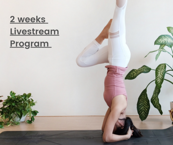 two-week Livestream Program final-2.png