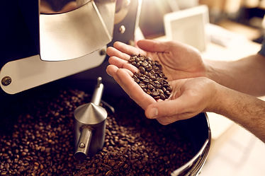 Cropped shot of a man's hands holding freshly roastd aromatic coffee beans over a modern m