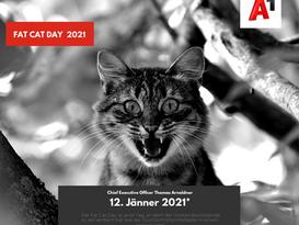 A1 FAT CAT DAY 2021