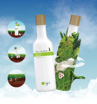 Tree in the bottle.jpg