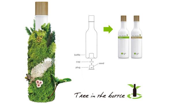 Tree in the bottle_seed.jpg