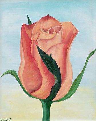 Rose Painting 'Desert Rose'