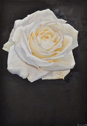Rose Painting 'Suspended Solitude'