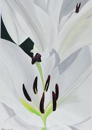 Floral Art 'Swans'