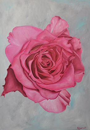 Rose Painting 'Patience'