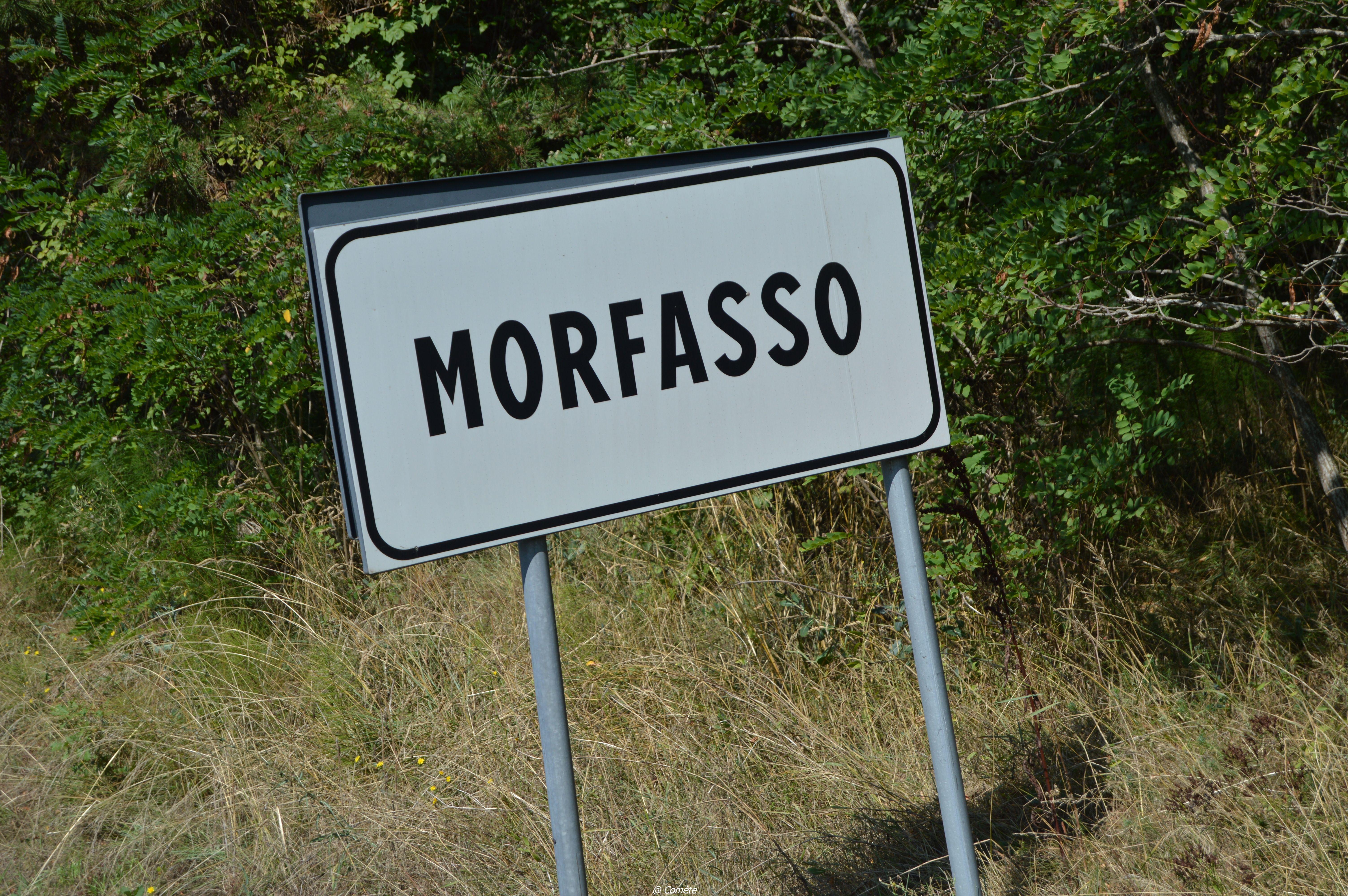 Morfaso0041