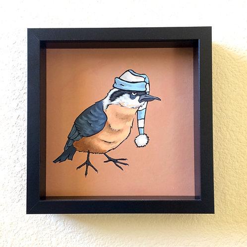 Alphabetical Birds- Nuthatch