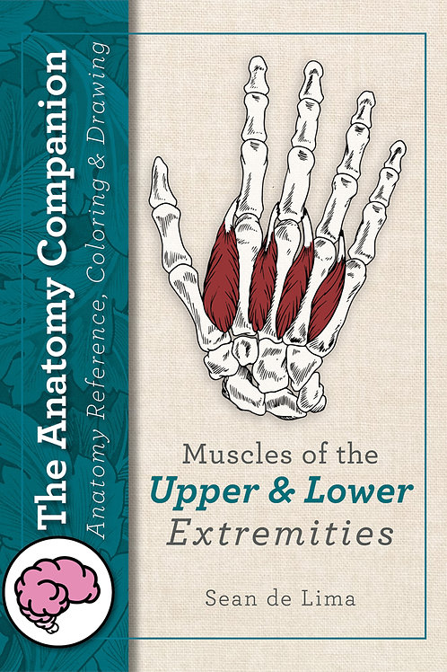 Anatomy Companion: Muscles of the Upper and Lower Extremities
