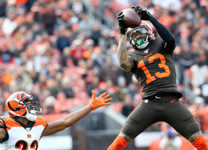 Week 17 Browns @ Bengals Preview