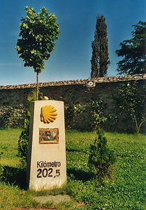 WF-0080.jpg