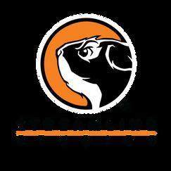 streamline-studios-logo.png