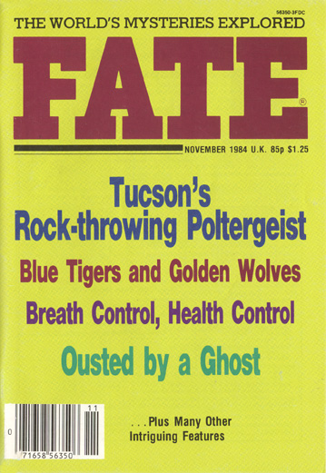 1984-11