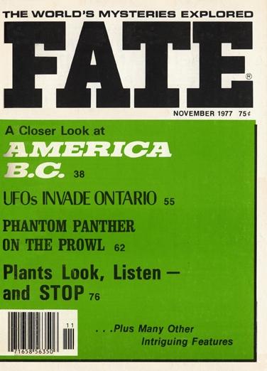 1977-11